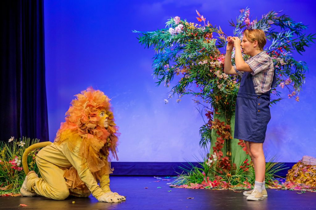 David meets Lion - A Lion in the Meadow and Other Stories
