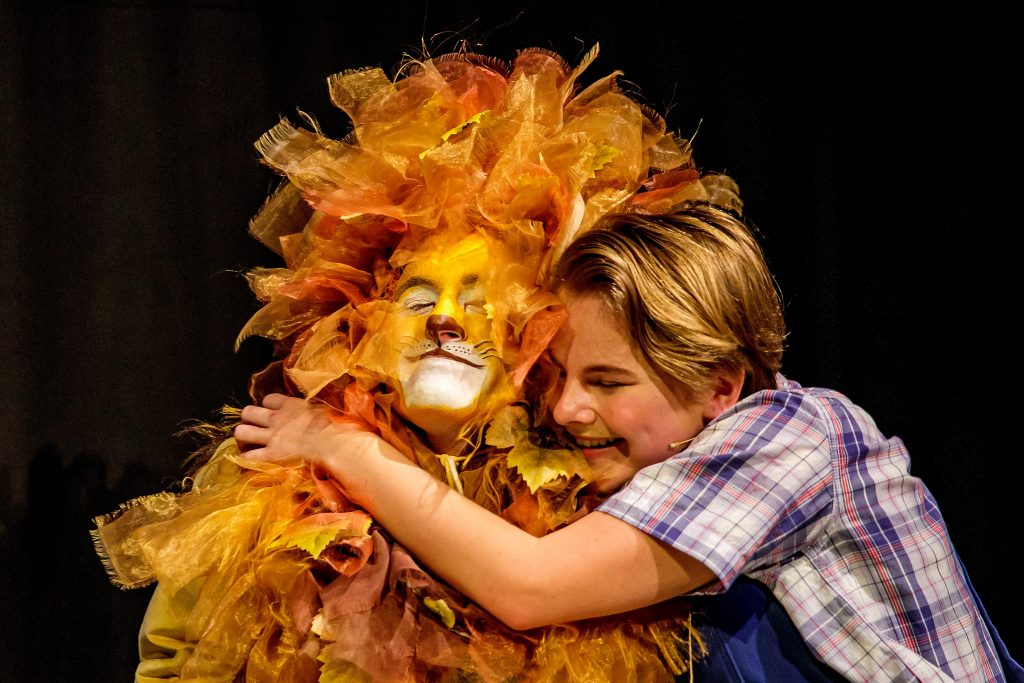 David and Lion - A Lion in the Meadow and Other Stories